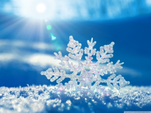 Narnia Workshop - Magic Snowflakes